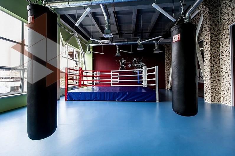фон фитнес хаус на софийской фото всего